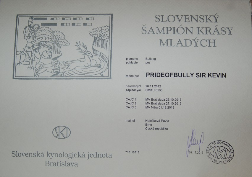 Prideofbully Sir Kevin Junior champion