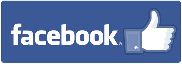 Facebook Leneyco