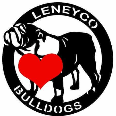Leneyco Bulldog chov anglických buldoků